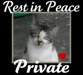 rip-private